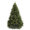 Ель Royal Christmas Washington LED 230210-LED (210 см)